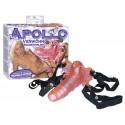 Motýlie nohavičky Apollo